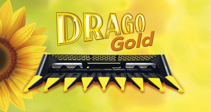 dragogoldbun
